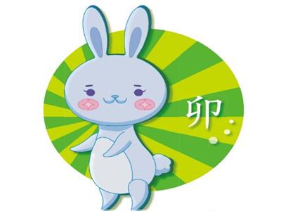 生肖兔2013年总体运势