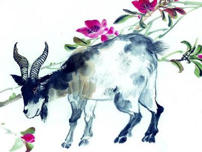 生肖羊2013年总体运势