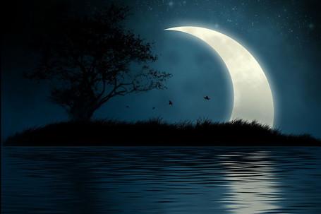 坐在月亮上 百科